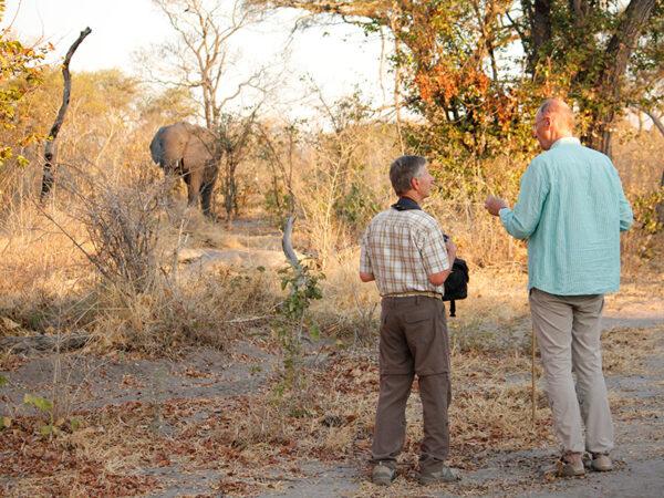 Bush-camp i Botswana