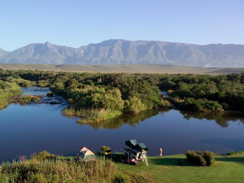 Bontebok nationalpark Sydafrika