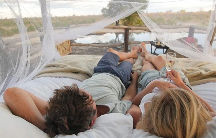Safari og afslapning