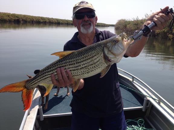 Guma Lagoon - Safari i Botswana og Zimbabwe