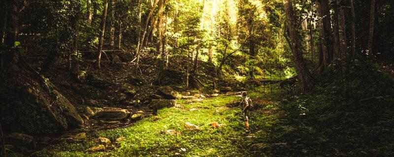 hiking udzungwa