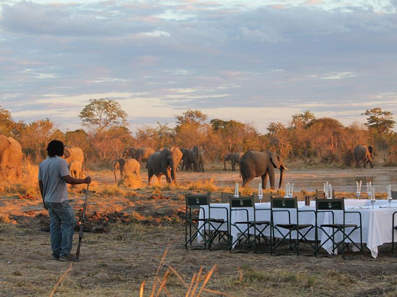 Dining with elephants - Elephants eye lodge