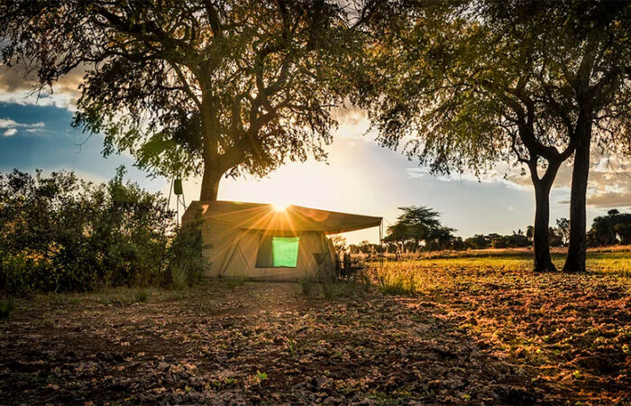 Safari-camp i Tanzania