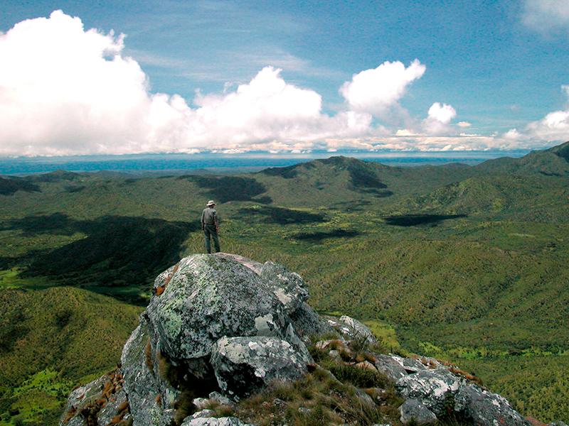 Nyika-plateauet - Northern Explorer