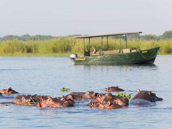 Flodsafari i Malawi | Southern Explorer Malawi