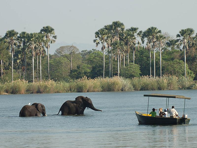 Flodsafari på Shire - Liwonde nationalpark iMalawi