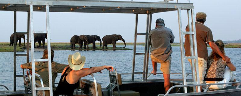Flodsafari på Chobe med Zambezi Queen