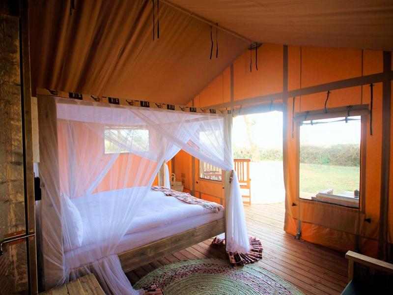 Safari og badeferie - Glamping
