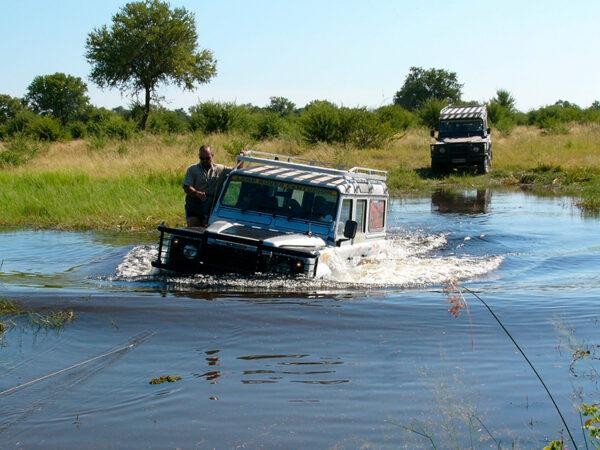 safari i Okavango-deltaet