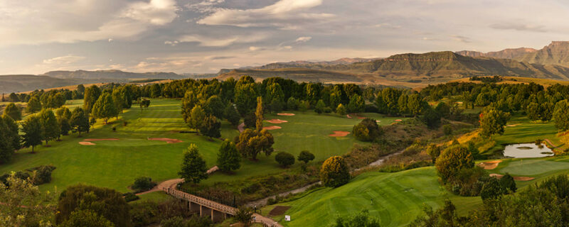 Golf og safari