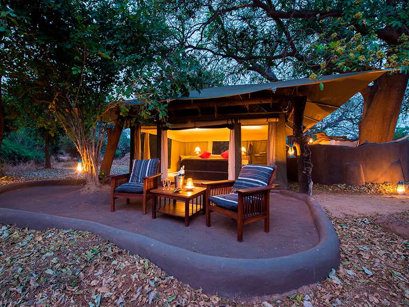 Honeymoon og Komfort i bushen