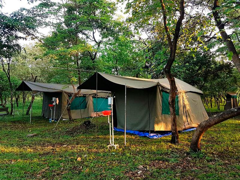 Camp i Simien