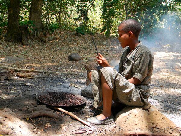 Kafferistning i etiopien