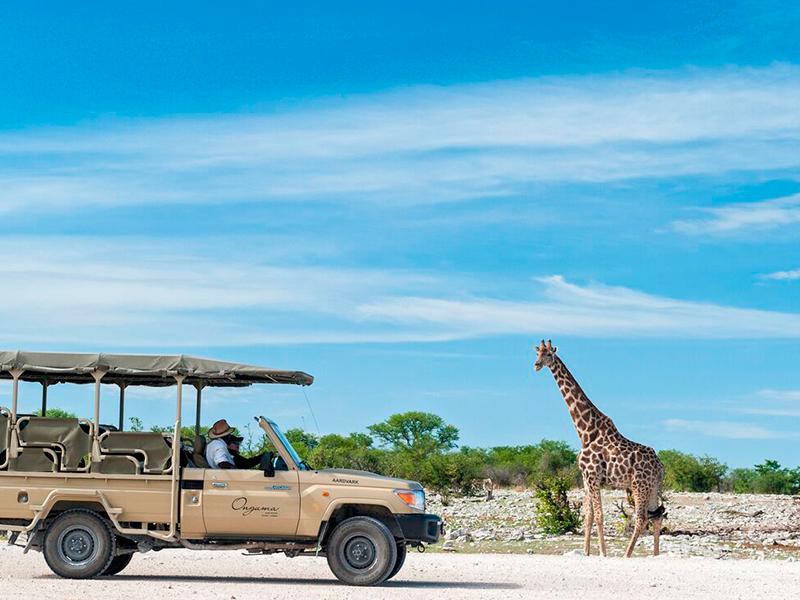 Kør selv i Namibia