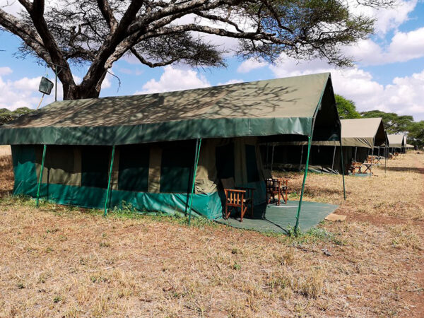 Safari-rundtur i Tanzania Serengeti lodge
