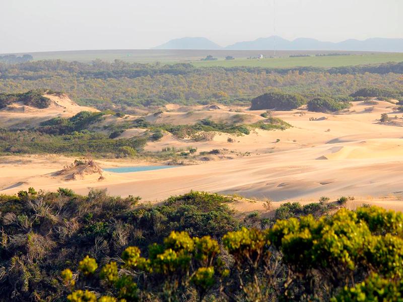 Cape St Francis Garden Route kør selv
