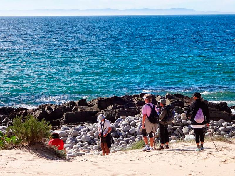 Cape St Francis - Garden Route kør selv